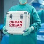 Транспортировка донорских органов санитарной авиацией
